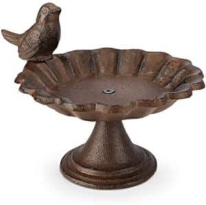 abbeveratoio-uccelli